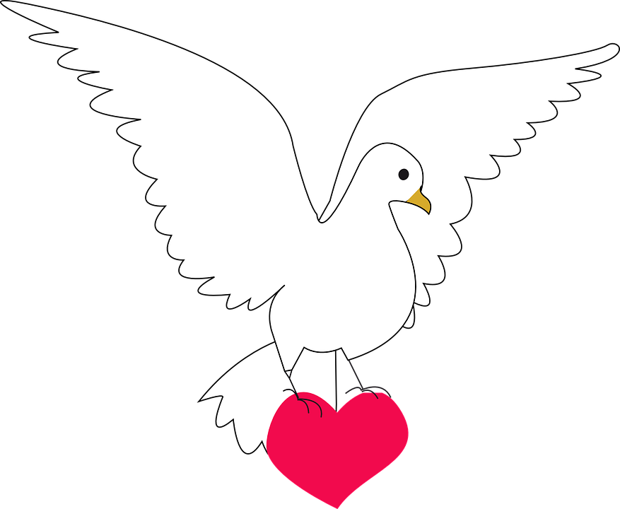 Extrêmement Peace, Dove - Free pictures on Pixabay VV62