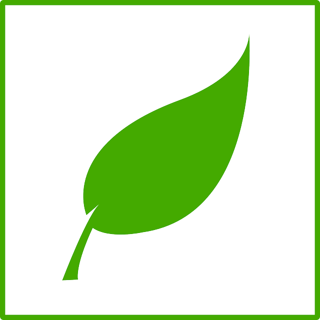 ccc- illustration- environment- symbol- leaf- eart - Scandic