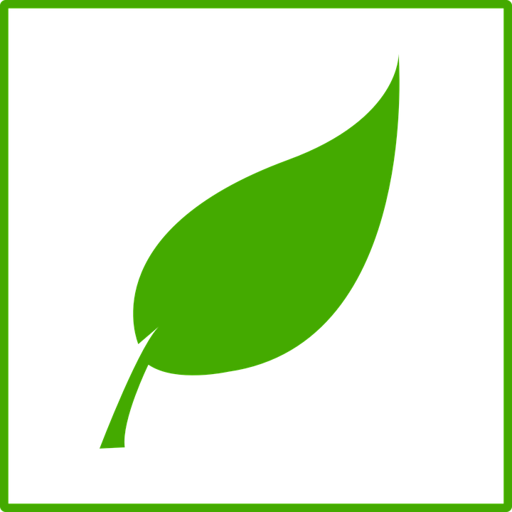 Ecology Green Leaf Free Vector Graphic On Pixabay