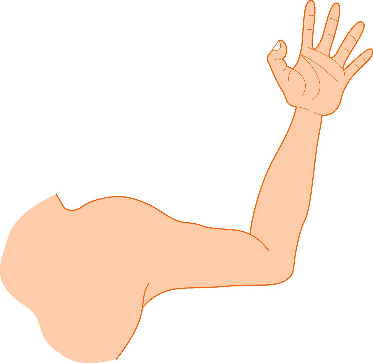 muskelzucken im arm