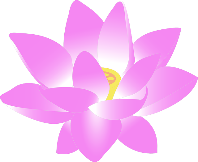 Flower Water Lily 183 Free Vector Graphic On Pixabay