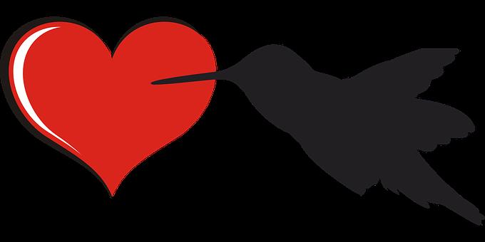 Herz, Liebe, Vogel, Kolibri