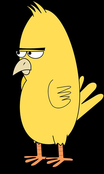 bird angry animal  u00b7 free vector graphic on pixabay Black Line Drawings of Owls Owl Line Art