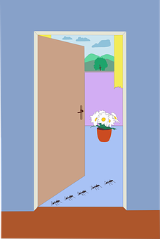Ants, House, Door, Flower, Room