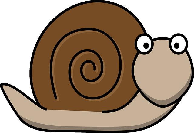 Snail animal fun free vector graphic on pixabay - Clipart escargot ...