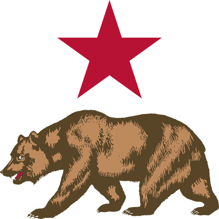 California Bear Star Free Vector Graphic On Pixabay