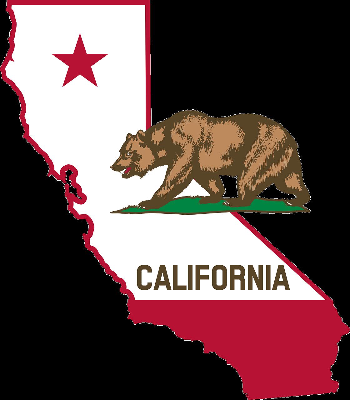 California state symbols pictures