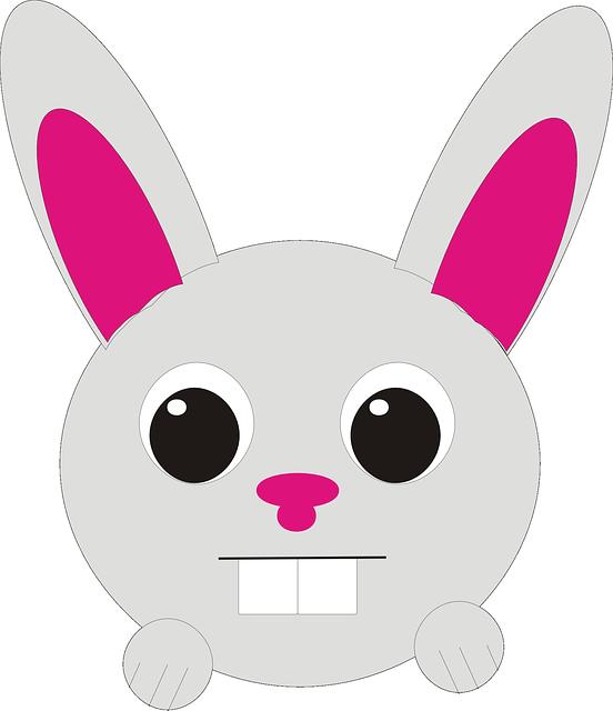 Hewan Kelinci Kepala Gambar vektor gratis di Pixabay