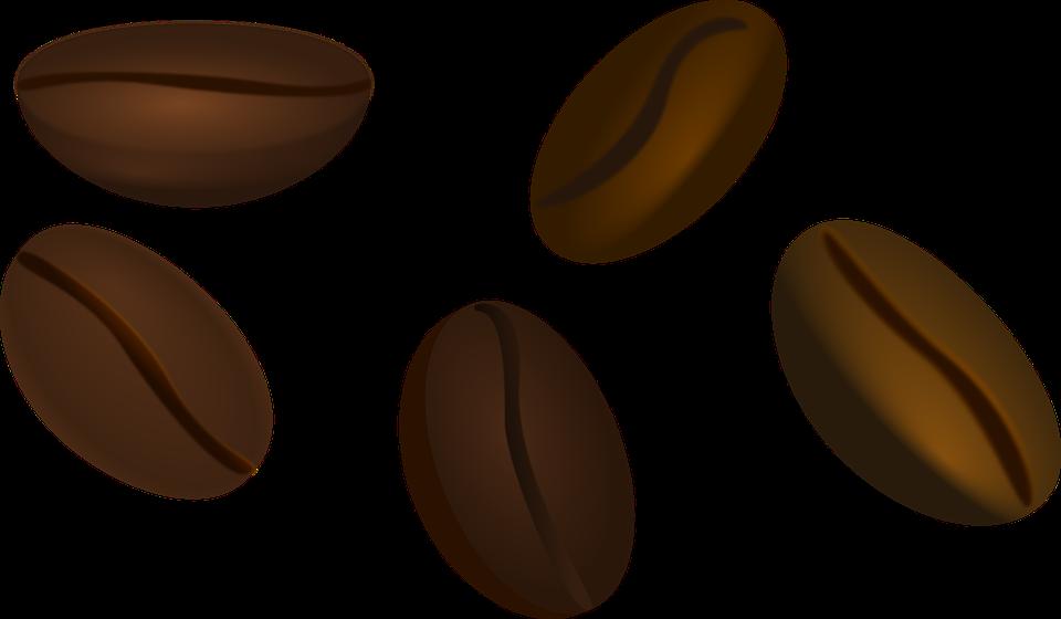 Graos De Cafe Feijao Grafico Vetorial Gratis No Pixabay