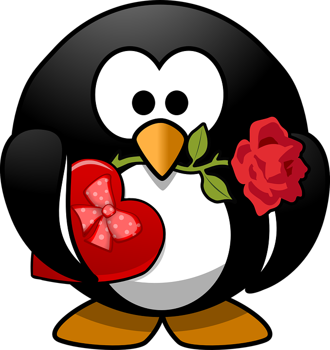 Penguin, Animal, Bird, Celebration, Chocolates, Flower