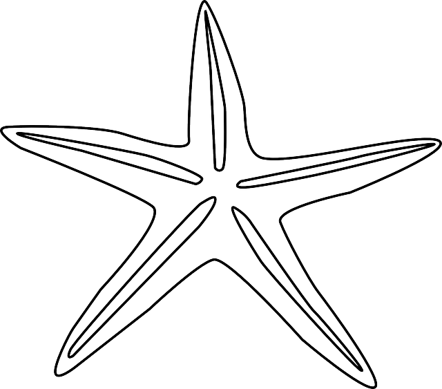 Starfish Echinodermata Animal Free Vector Graphic On Pixabay