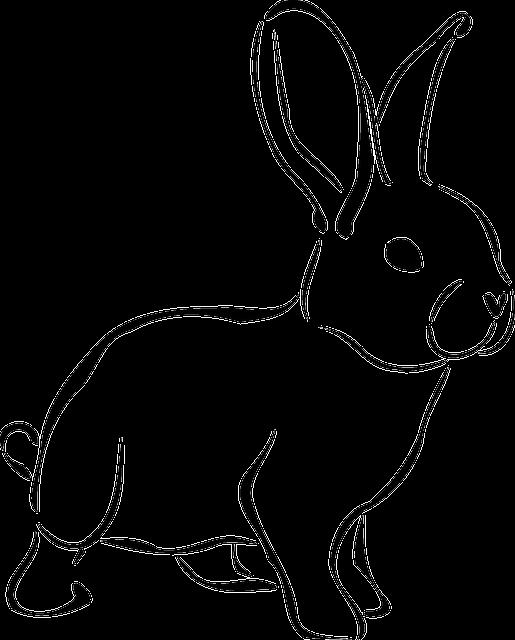 Kostenlose vektorgrafik kaninchen tier tierwelt natur kostenloses bild auf pixabay 161467 - Hase zeichnen ...