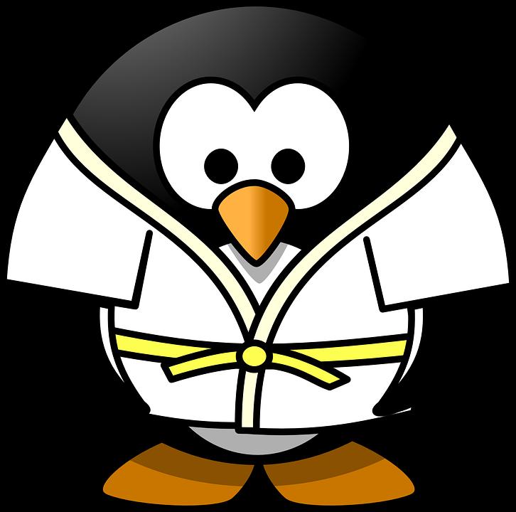 Sport Pinguin