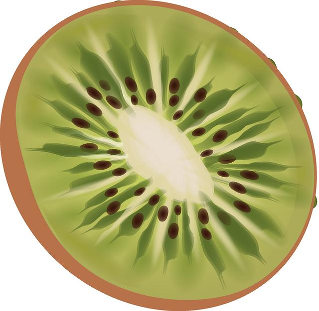Kiwi Fruit Fresh Free Vector Graphic On Pixabay