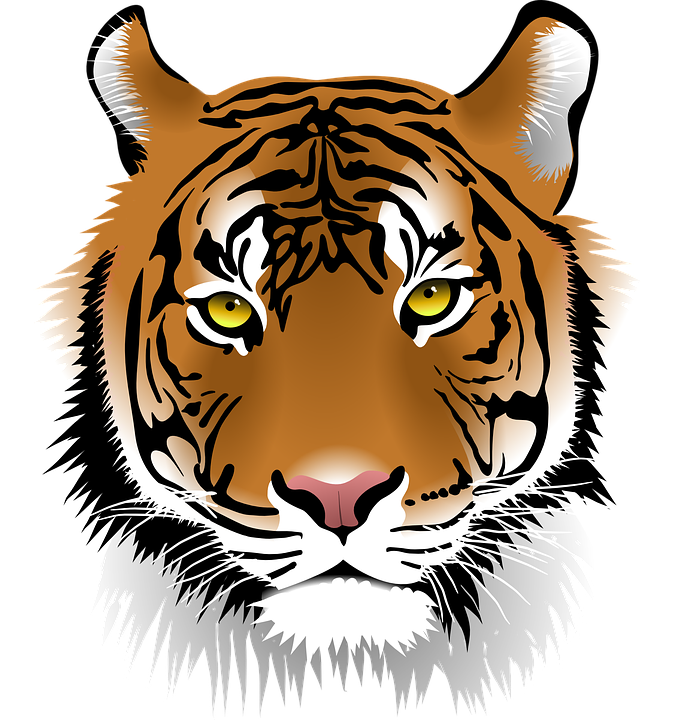 Image result for tiger head