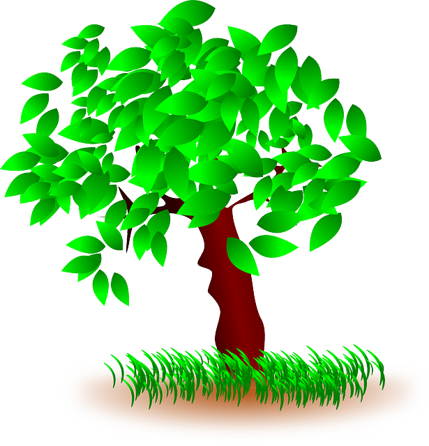 Tree Leaves Grass · Free vector graphic on Pixabay