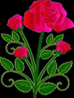 Bouquet, Kukka, Rose, Punainen, Rakkaus