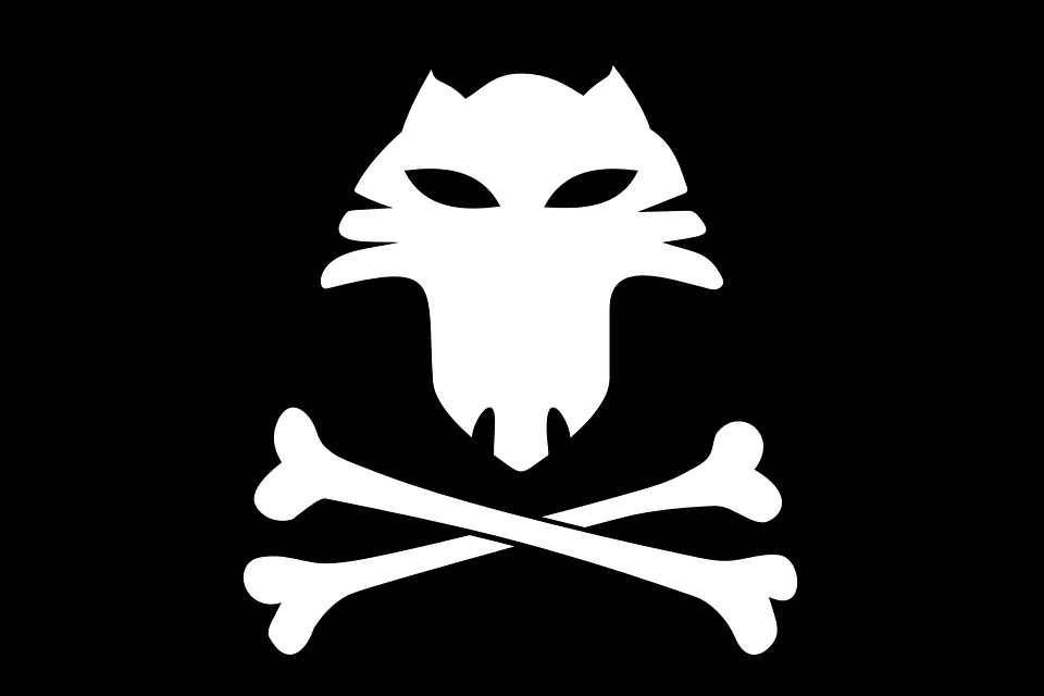 free vector graphic  fox  bones  jolly roger  pirates - free image on pixabay
