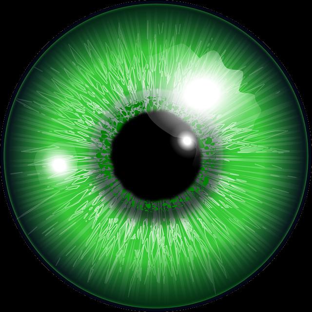 eye green iris  u00b7 free vector graphic on pixabay