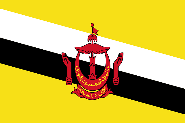 Brunei Flag Vector Free Download