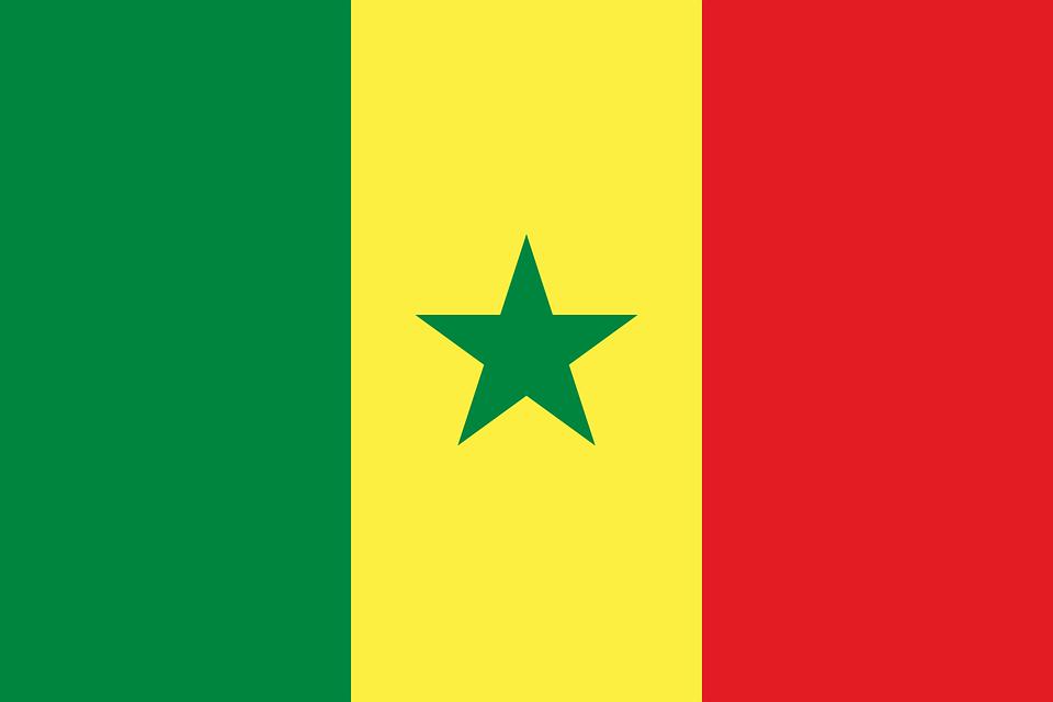 セネガル, フラグ, 国旗, 国, エンサイン, シンボル, 国家の旗, 状態, 国民の状態, 国籍, 記号
