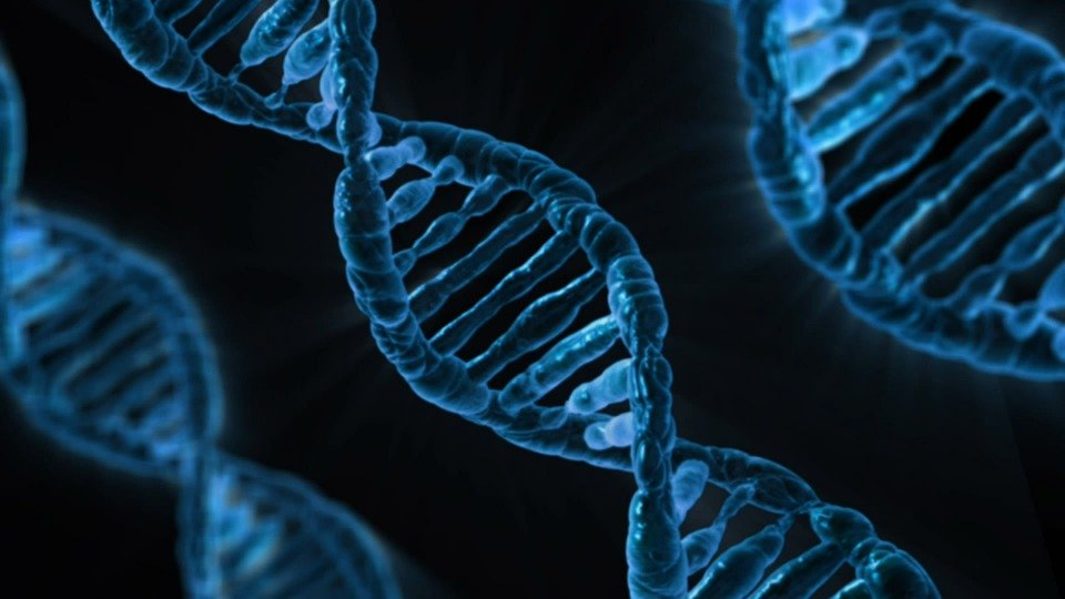 Dna, Biology, Medicine, Gene, Microbiology, Science
