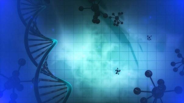 Микробиология, Ячейки, Джин, Днк