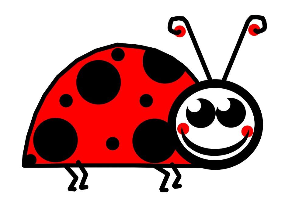 Lady Bug Clip Art Cartoon Red Polka Dot Card