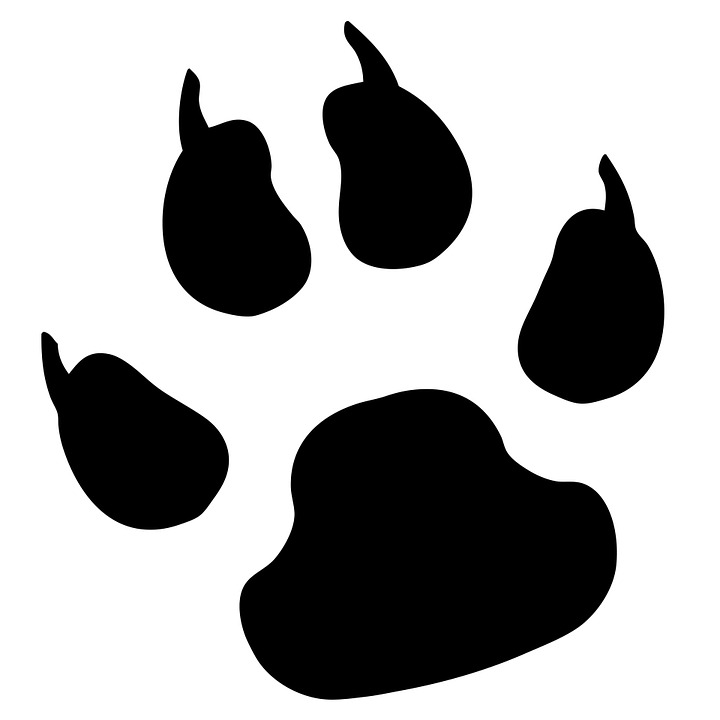 Paw Print Pawprint Dog Free Image On Pixabay