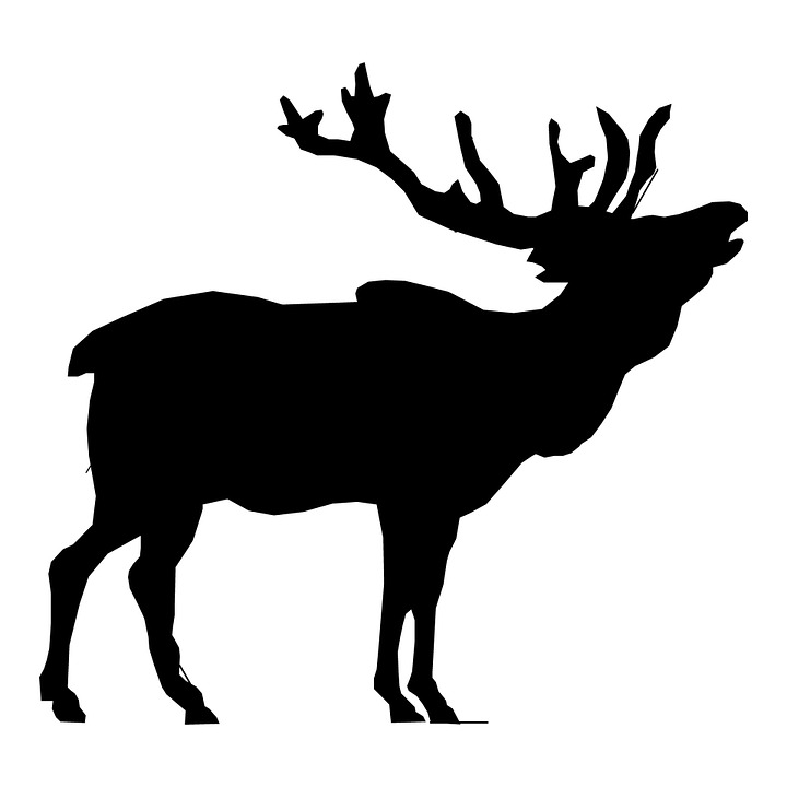 Clip Art Elk Clipart free illustration elk stag head deer clip art image isolated outline