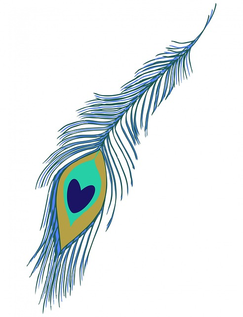 Peacock Feather 183 Free Image On Pixabay