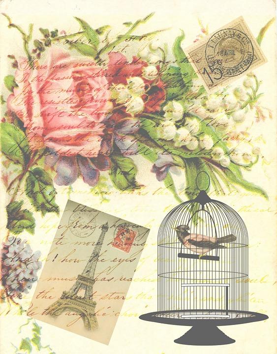 free illustration vintage victorian bird birdcage free image on pixabay 163677. Black Bedroom Furniture Sets. Home Design Ideas