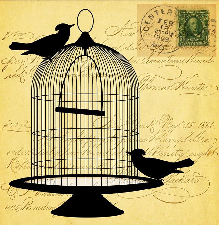 Préférence Illustration gratuite: Vintage, Victorienne, Oiseau - Image  XP72