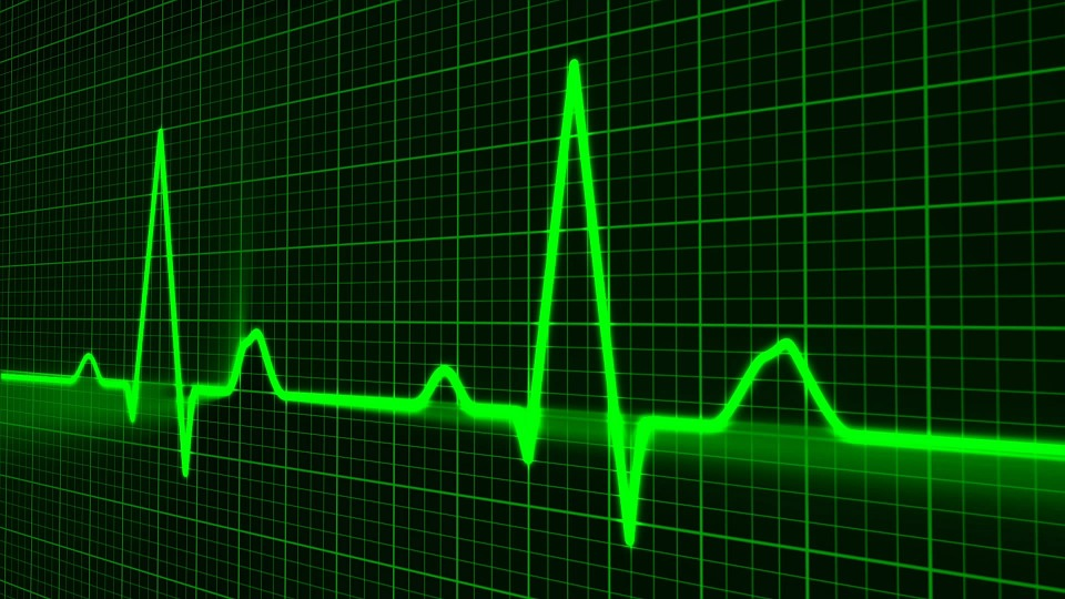 Pulse Trace, Healthcare Medicine, Heartbeat