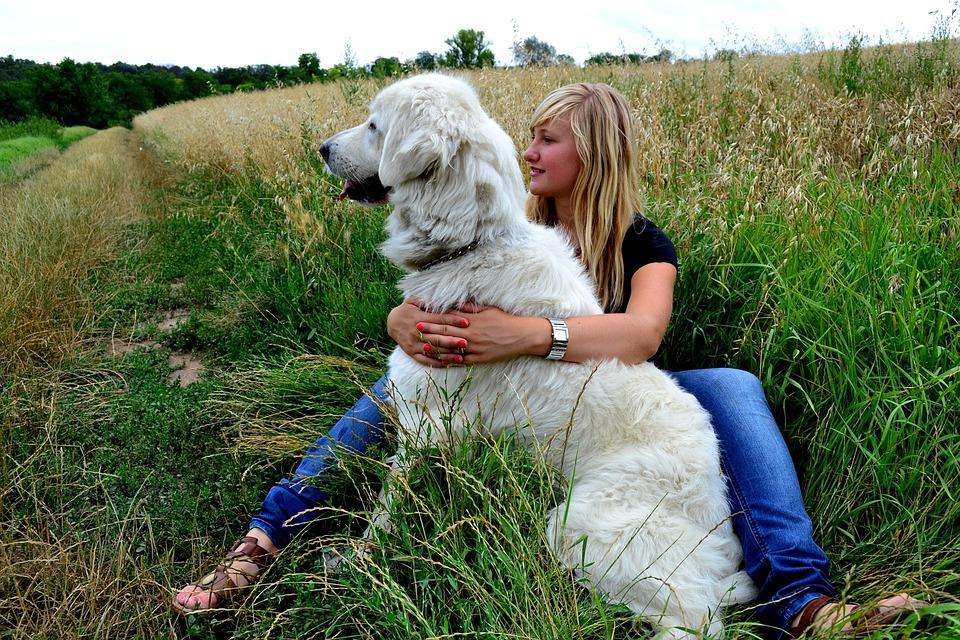 Woman Dog Nature To Take The · Free photo on Pixabay