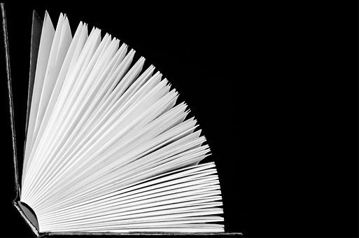Open Book Page Pages Books Adventure