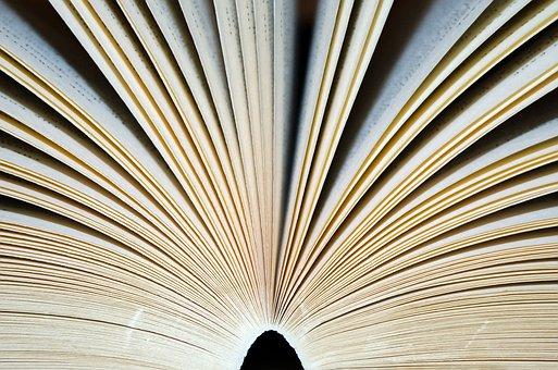 Abrir, livro, página, páginas, livros
