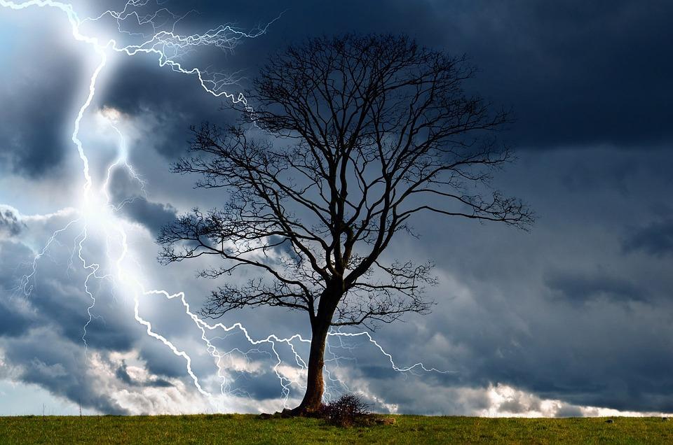 arbre tempte ciel la foudre la pluie mto - Arbre Ciel