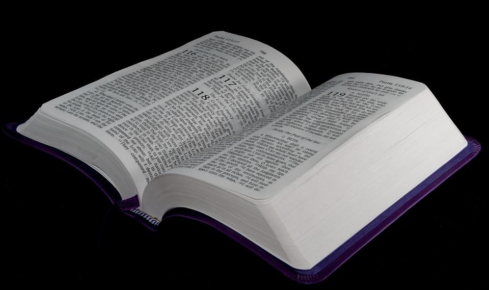 Schattig, Mensen, Tekst, Achtergrond, Basis, Bijbel