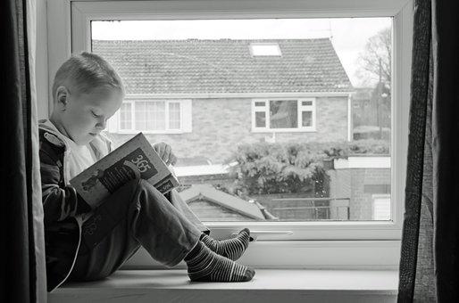 Aprendizaje, Desarrollo, Buscando