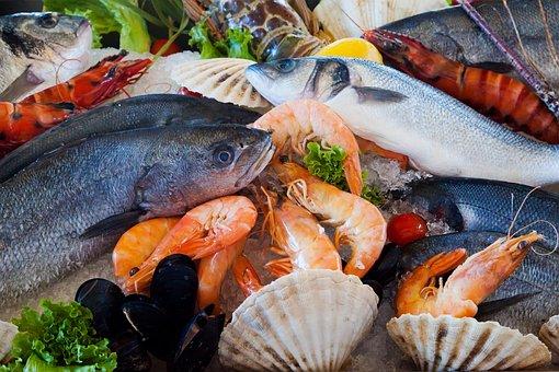 Seafood, Food, Healthy, Sea, Fresh, Fish