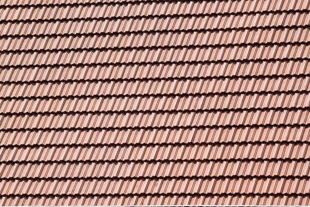 kostenloses foto dach fliesen berdachung kostenloses bild auf pixabay 164719. Black Bedroom Furniture Sets. Home Design Ideas