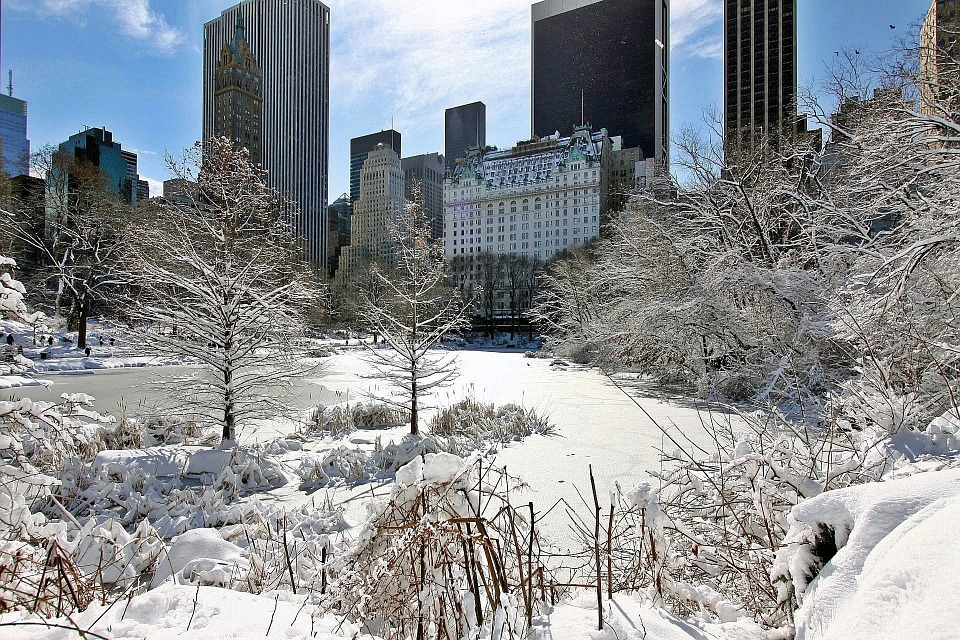 New York, City, Manhattan, Central, Park, Snow, Storm