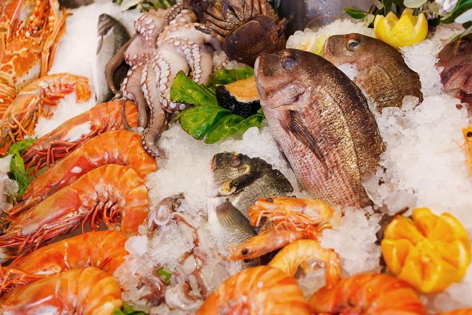 Frutti Di Mare, Cibo, Sano, Mare, Fresco, Di Pesce