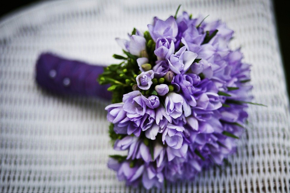 free photo marriage, flower, purple flowers  free image on, Beautiful flower