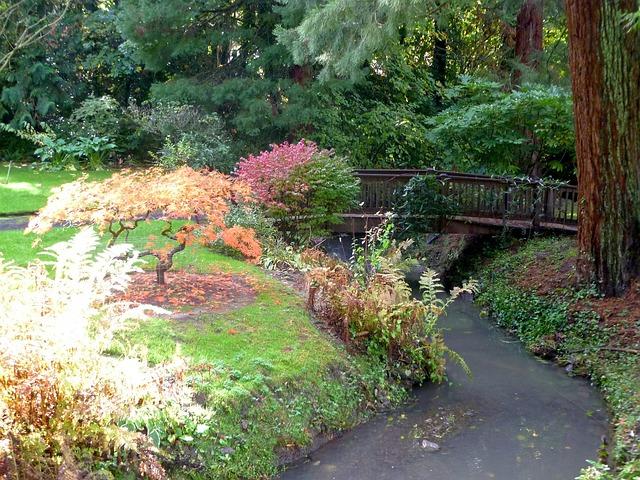 Free photo bridge japanese garden river free image on for Landscaping rocks yarra valley