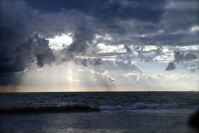 Free Photo Ocean Horizon Clouds Sea Free Image On