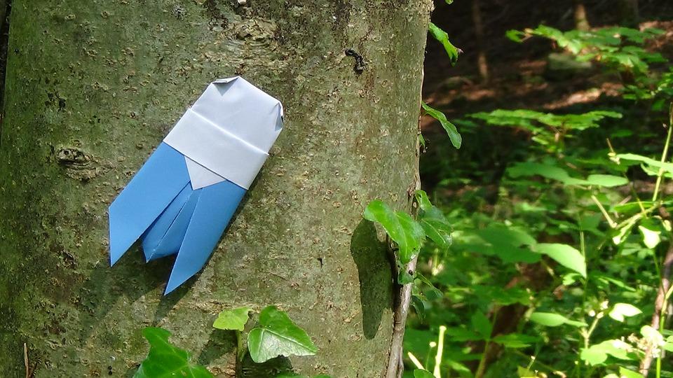 Origami Grasshopper Free Photo On Pixabay