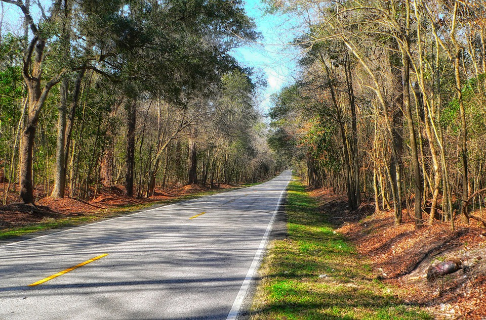 South Carolina Landscape Scenic Free Photo On Pixabay