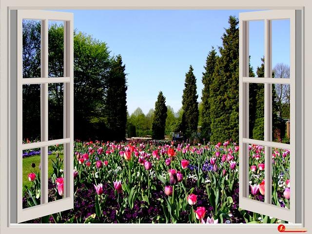 kostenloses foto fenster blumen garten tulpen kostenloses bild auf pixabay 174602. Black Bedroom Furniture Sets. Home Design Ideas